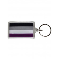 Asexual Flag Key Ring (T5148)