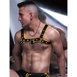 BoXer Shoulder Leather Harness w/ Ring Hook Black/Yellow